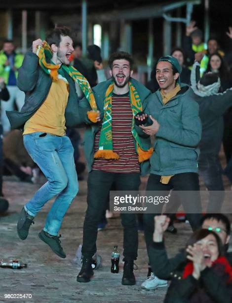 Australian fans react as Mile Jedinak of the Socceroos scores the first goal for Australia as they watch the FIFA World Cup match between the...