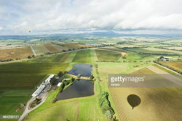 Australian fields from a hot air balloon