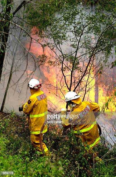 Australian firemen fight a bush fire December 30 2001 at the Blue Mountains suburb of Blaxland New South Wales Australia The bush fires started on...