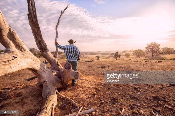 australian outback farmer - australian bushfire stock pictures, royalty-free photos & images