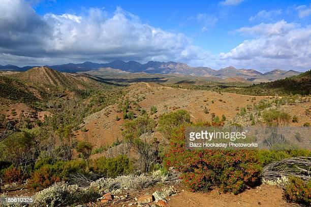 Australian Outback. Flinders Ranges