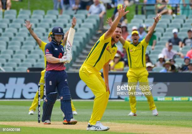 Australian players appeal for the dismissal of England batsman Eoin Morgan during the fourth oneday international cricket match between England and...