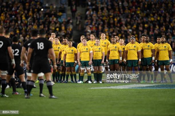 Australian players look on as The All Blacks perform the Haka during The Rugby Championship Bledisloe Cup match between the Australian Wallabies and...
