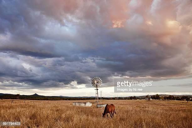 Australian rural farmland