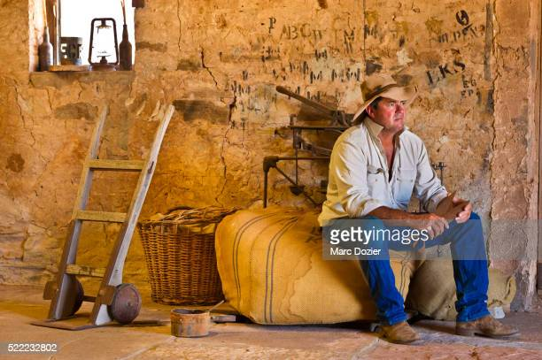 Australian Sheperd