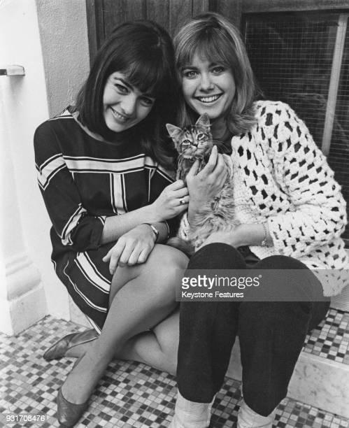 Australian singing duo Pat Carroll and Olivia NewtonJohn aka Pat and Olivia pose with a kitten UK November 1967