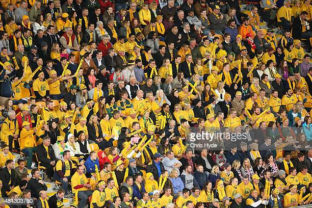Australian Wallabies fans cheer during The Rugby Championship match between the Australian Wallabies and the South Africa Springboks at Suncorp...