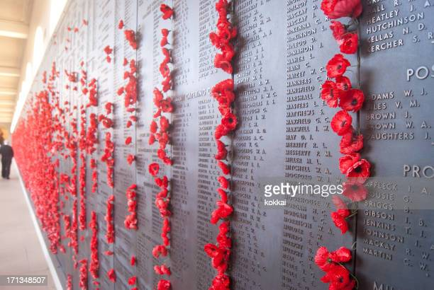 australian war memorial - wall of remembrance - cenotaph stock pictures, royalty-free photos & images
