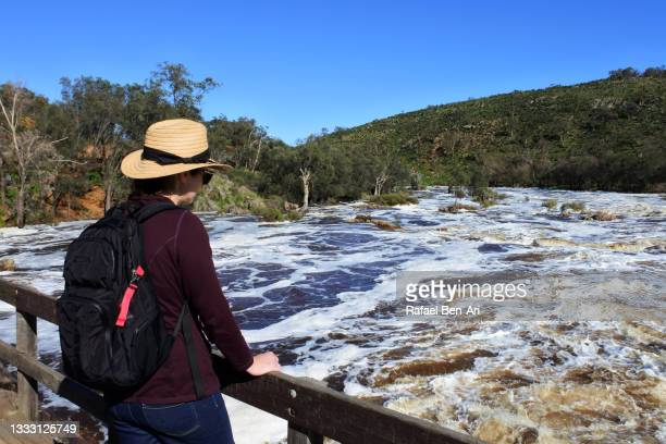 australian woman hiking alone looking at the view  the swan river near perth in western australia - rafael ben ari fotografías e imágenes de stock