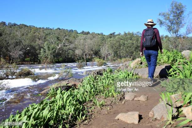 australian woman hiking along the swan river in swan valley near perth in western australia - rafael ben ari stock pictures, royalty-free photos & images