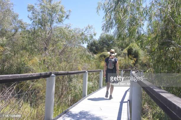 australian woman hiking in bush land in western australia - rafael ben ari stockfoto's en -beelden