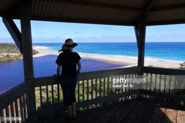 australian woman looking at the view of the moore river - rafael ben ari 個照片及圖片檔
