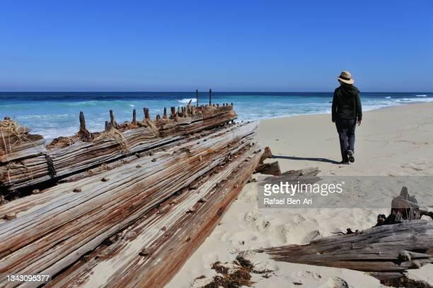 australian woman standing beside an old wooden shipwreck near perth western australia - rafael ben ari bildbanksfoton och bilder
