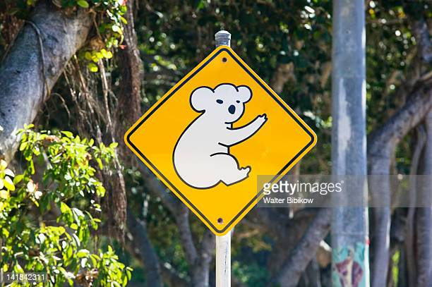 australia-queensland-north coast-magnetic island: koala crossing sign - townsville australia fotografías e imágenes de stock