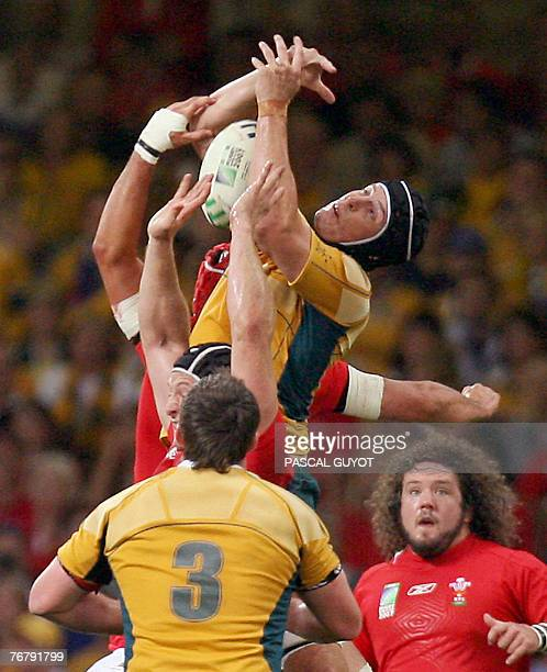 Australia's lock Daniel Vickerman tries to catch the ball on a lineout during the rugby union World Cup group B match Wales vs Australia 15 September...