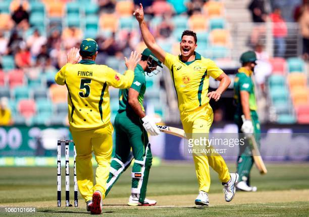 Australia's Marcus Stoinis celebrates with his captain Aaron Finch after dismissing South Africa's batsman Reeza Hendricks during the third oneday...