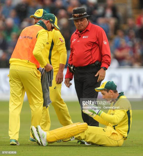 Australia's Tim Paine is treated on the pitch after being hit in the face during the Royal London OneDay Series 2nd ODI between England and Australia...