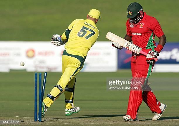 Australia's wicketkeeper Brad Haddin effects a stumping of Zimbabwe's Hamilton Masakadza during the opening cricket match between Australia and...