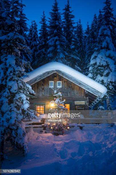 austria, altenmarkt-zauchensee, christmas tree at illuminated wooden house in snow at night - country christmas stock pictures, royalty-free photos & images
