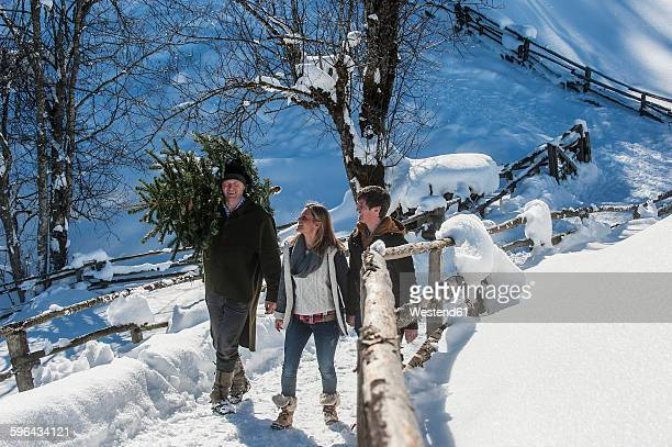 Austria, Altenmarkt-Zauchensee, man with couple carrying Christmas tree in winter landscape