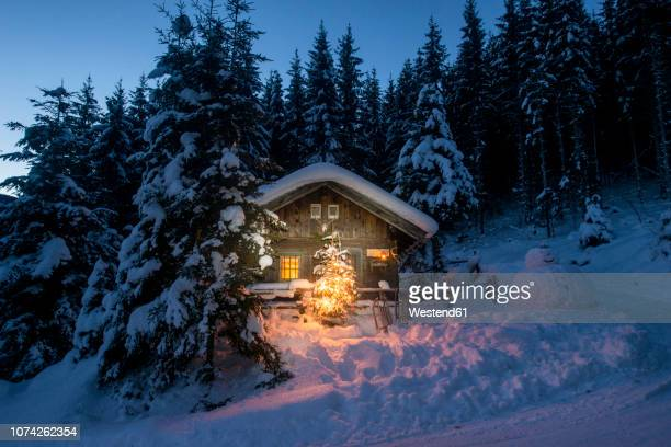 austria, altenmarkt-zauchensee, sledges, snowman and christmas tree at illuminated wooden house in snow at night - shack stock pictures, royalty-free photos & images