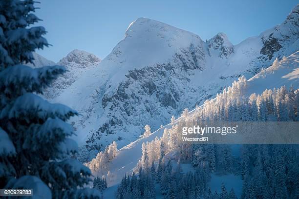 austria, berchtesgaden alps, hoher goell at sunrise - berchtesgaden alps stock photos and pictures