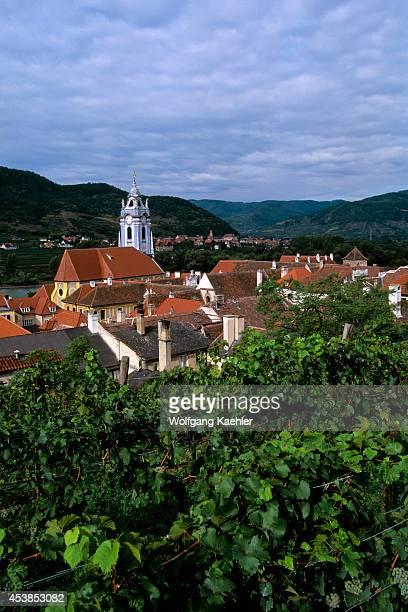 Austria Durnstein View Of Town Vineyard In Foreground