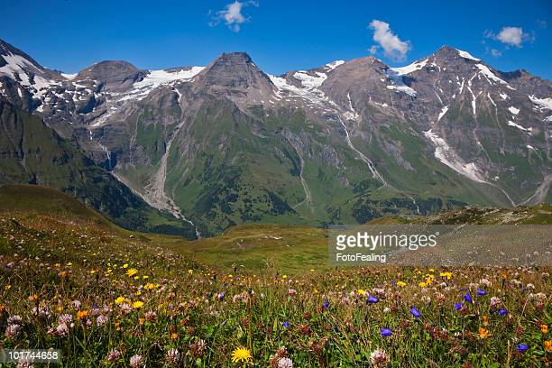 Austria, Landscape of Mount Breitkopf and Hohe Dock