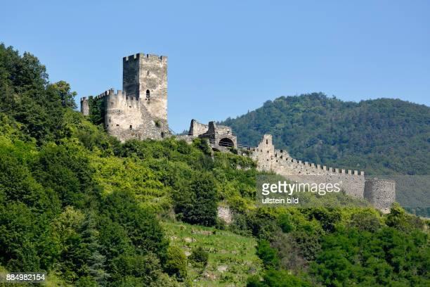 Austria Lower Austria ASpitz an der Donau Danube Wachau Waldviertel Hinterhaus Ruin on the Jauerling Jauerlingstock Hausberg castle ruin hill castle...