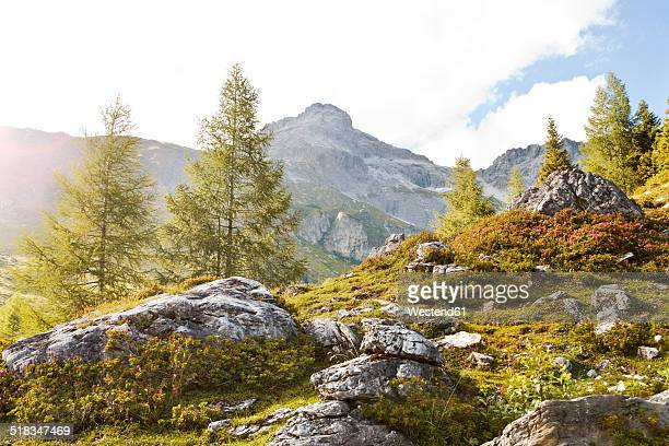 Austria, Lungau, stones in alpine landscape