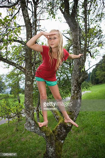 Austria, Mondsee, Girl (12-13 Years) on a tree, looking away