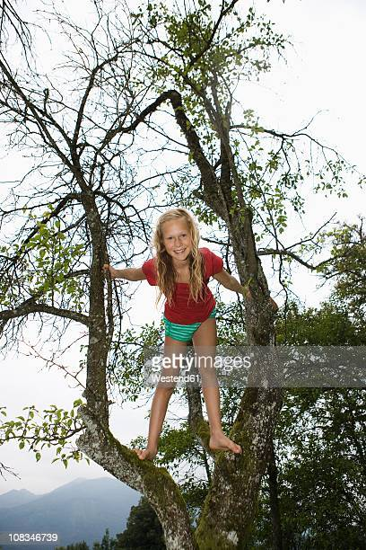austria, mondsee, girl (12-13 years) on tree, portrait, smiling - 12 13 years stock-fotos und bilder