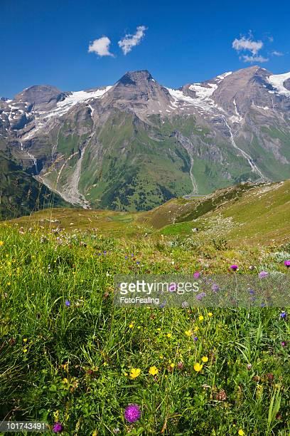Austria, Mountain scenery, Mount Breitkopf, Hohe Dock and Vorderer Bratschenkopf