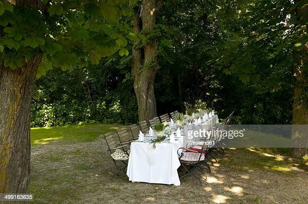 Austria, Rosenburg, festive decorated table outdoors