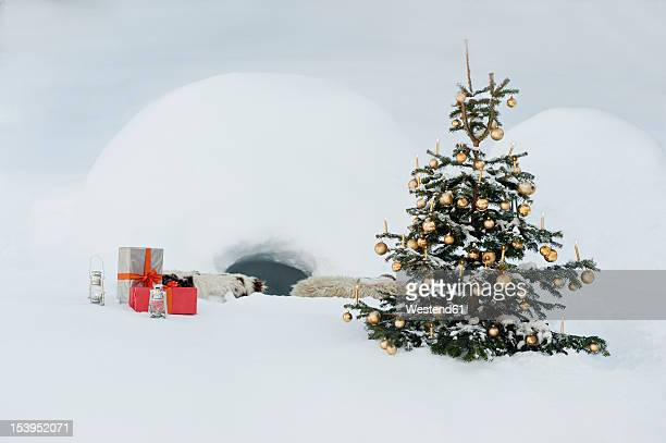 Austria, Salzburg County, Christmas tree and presents in snow in front of igloo