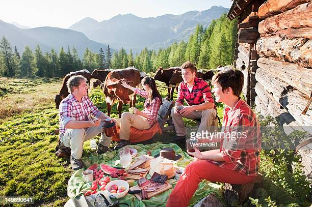 austria, salzburg county, men and women having picnic near alpine hut at sunset - milk pack stock photos and pictures