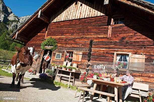 Austria, Salzburg County, Men and women sitting and drinking at alpine hut, musician in background