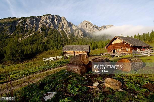 austria, salzburg land, mountain pasture - chalet de montagne photos et images de collection