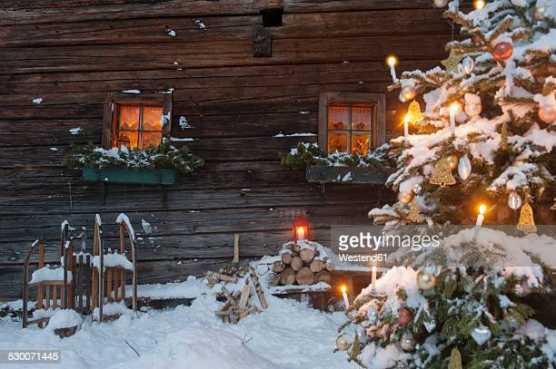 Austria, Salzburg State, Altenmarkt-Zauchensee, facade of wooden cabin with lightened Christmas Tree in the foreground