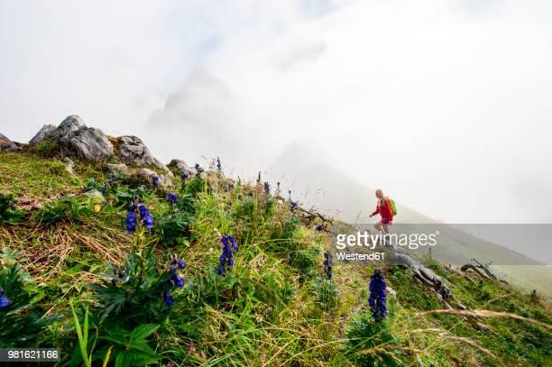 austria, salzburg state, filzmoos, female hiker - steep stock pictures, royalty-free photos & images