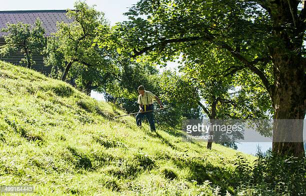 austria, salzburg state, flachau, senior farmer in summer meadow - scythe stock photos and pictures