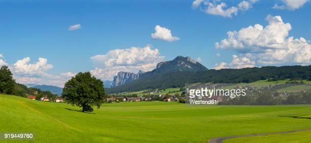 Austria, Salzburg State, Flachgau, Thalgau, Drachenwand and Schober