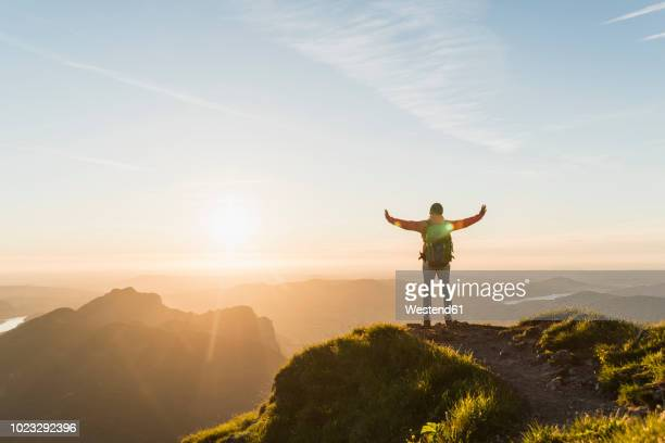 austria, salzkammergut, hiker reaching summit, raising arms, cheering - aussicht genießen stock-fotos und bilder