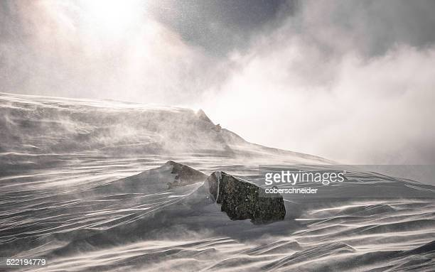 austria, snow storm forming snowy landscape - blizzard stock pictures, royalty-free photos & images