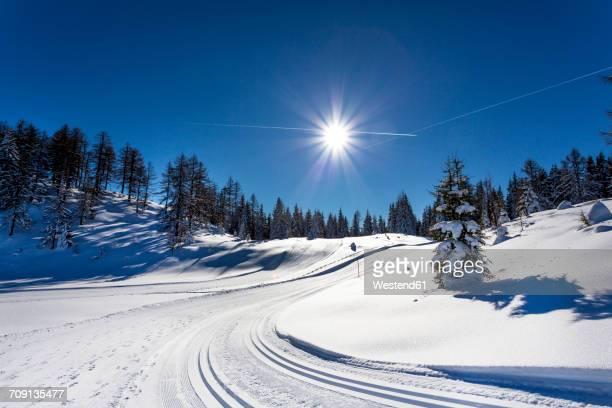 austria, st johann im pongau, alpendorf, obergassalm, snow-covered winter landscape - snötäckt bildbanksfoton och bilder