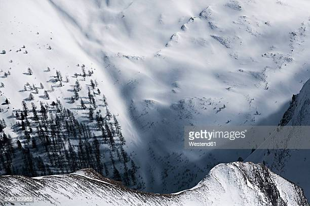 Austria, Tyrol, Ischgl, trees in winter landscape
