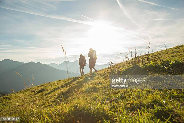 Austria, Tyrol, Tannheimer Tal, young couple hiking on alpine meadow