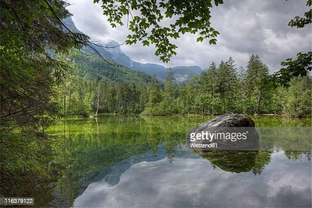 Austria, Upper Austria, Salzkammergut region,  Koppenwinkellacke lake with Dachstein mountains in background