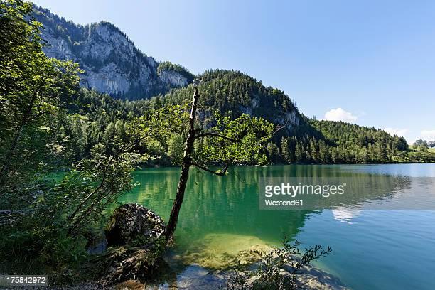 Austria, Upper Austria, View of Gleinkersee Lake