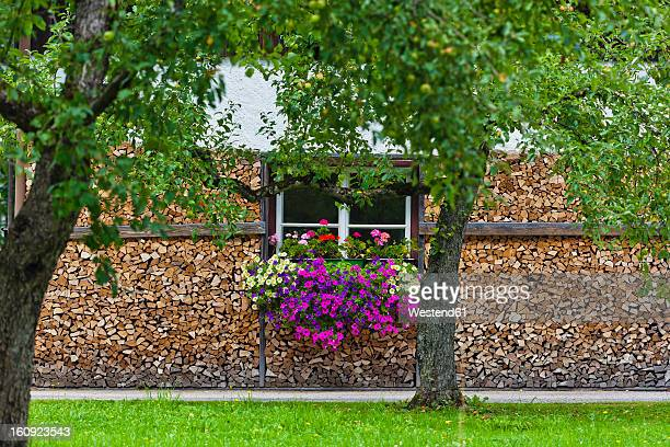 Austria, Upper Austria, View of house with firewood and flowers near Hallstatt